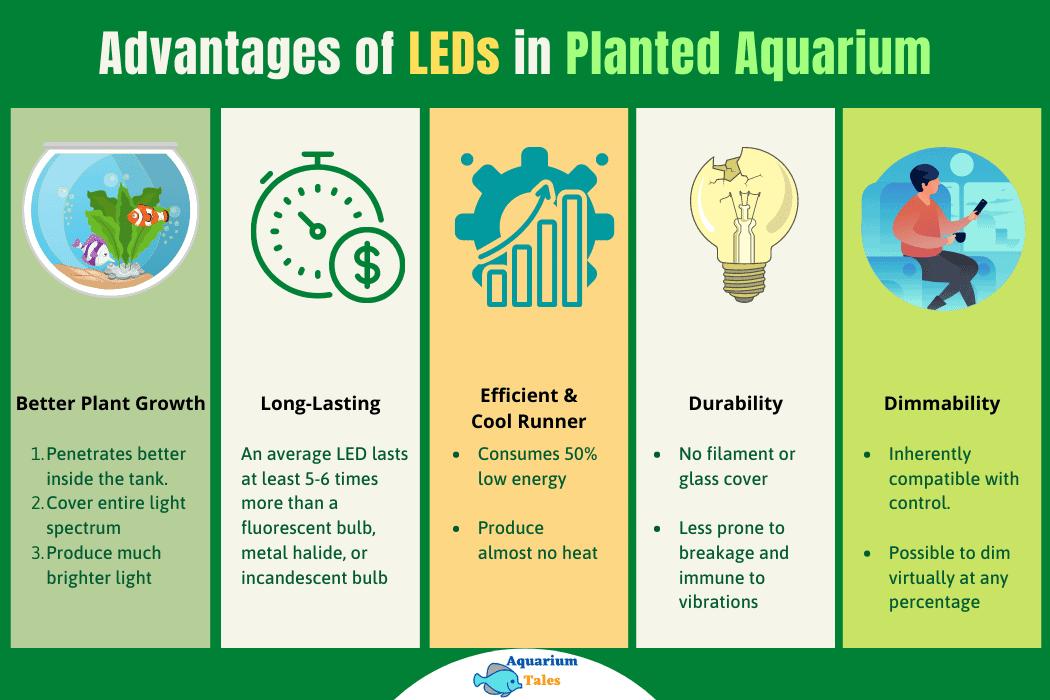 Advantages of LEDS in Planted Aquarium