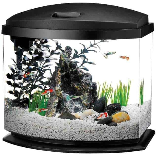 Aqueon LED MiniBow Betta fish tank