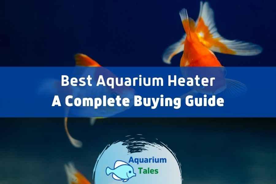 Best Aquarium Heater Review by Aquarium Tales