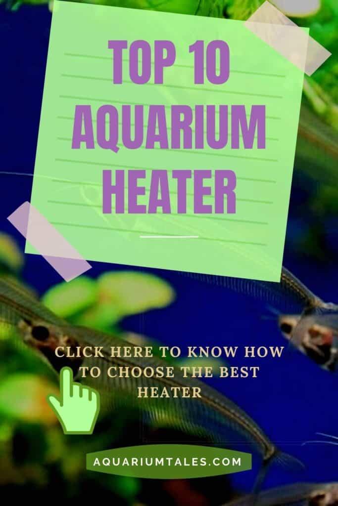 Best aquarium heater (A complete buying guide)