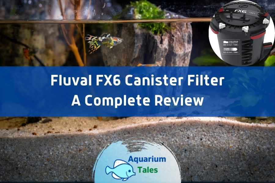 Fluval FX6 Canister Filter Review by Aquarium Tales