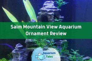 Saim Mountain View Aquarium Ornament Review by Aquarium Tales