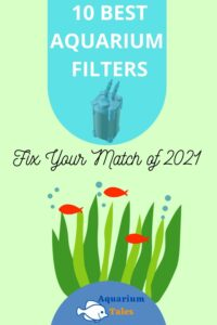 The 10 Best Aquarium Filters
