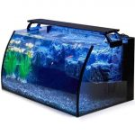 hygger Horizon 8 Gallon LED Glass fish tank Aquarium Kit