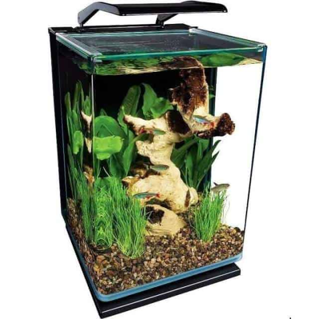 Marineland Portrait Glass LED Aquarium, A Full Review 2020
