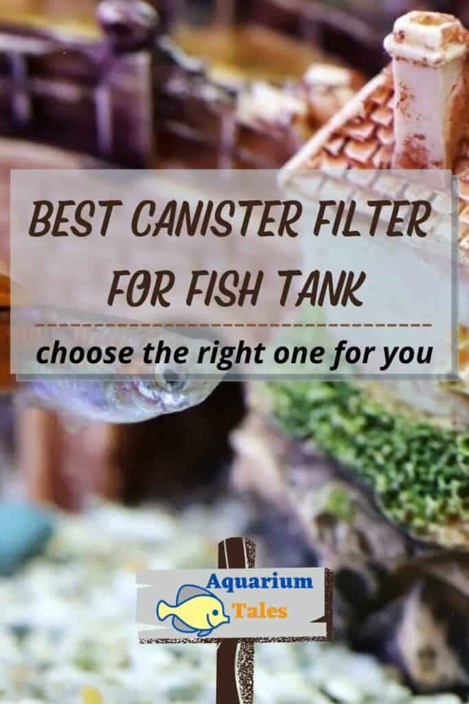 Best Canister Filter for Fish Tank Review