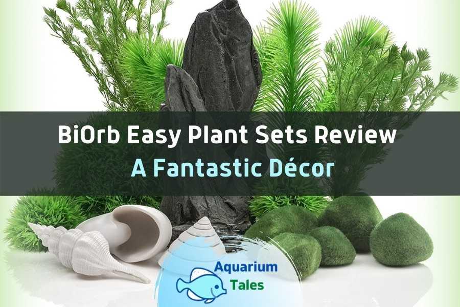BiOrb Easy Plant Sets Review by Aquarium Tales