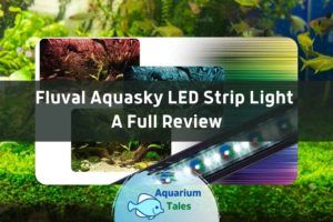 Fluval Aquasky LED Strip Light Review by Aquarium Tales