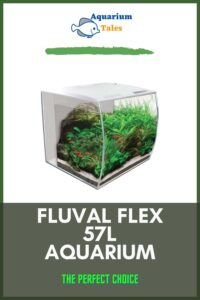 Fluval Flex 57L Aquarium Review 2021