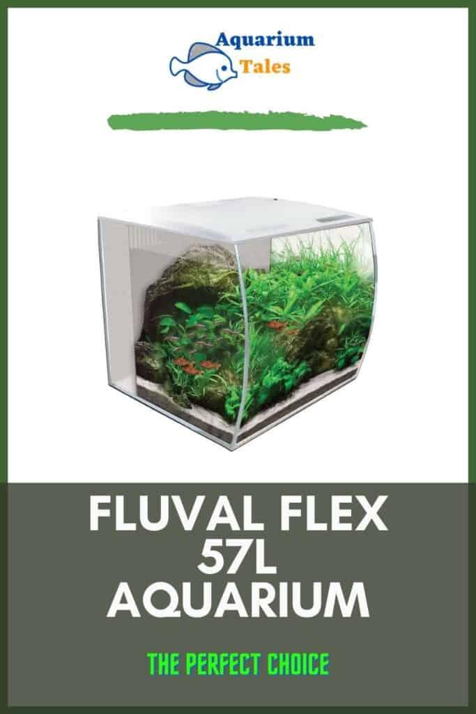 Fluval Flex 57L Aquarium Review 2021