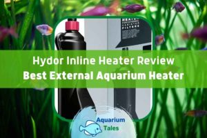 Hydor Inline Heater Review by Aquarium Tales