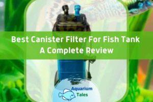 Penn Plax Cascade Canister Aquarium Filter Review by Aquarium Tales