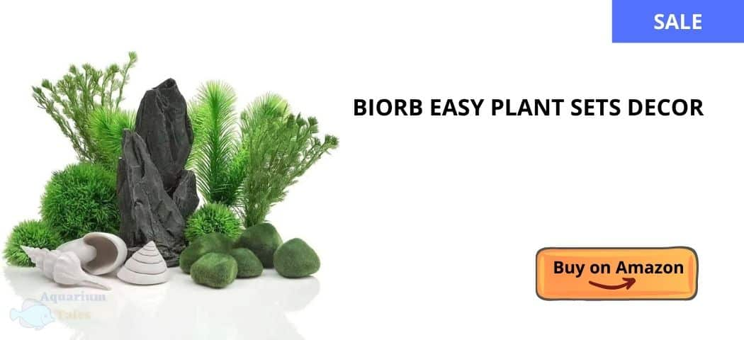 biorb easy plant sets review article