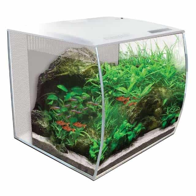 Fluval Flex 57L Aquarium, the Perfect Choice of 2020?