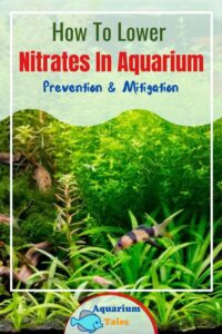how to lower nitrate in freshwater aquarium - prevention & mitigation