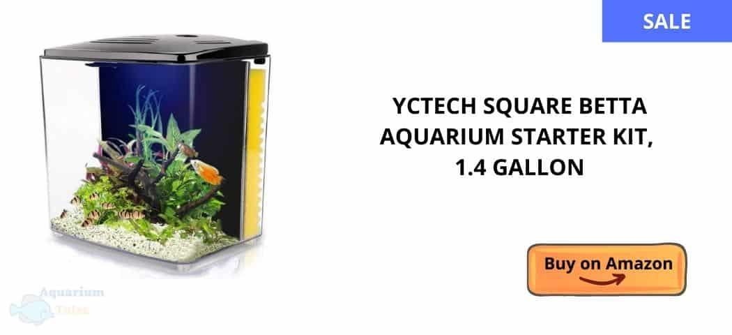 YCTECH Square Betta Aquarium Starter Kit, 1.4 Gallon