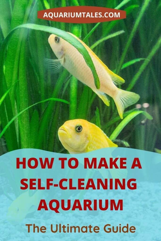 Self Sustaining Aquarium guide