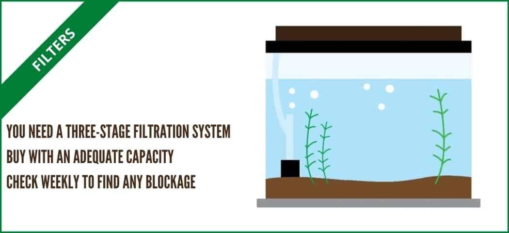 filter for self sustaining tank (aquarium tales)