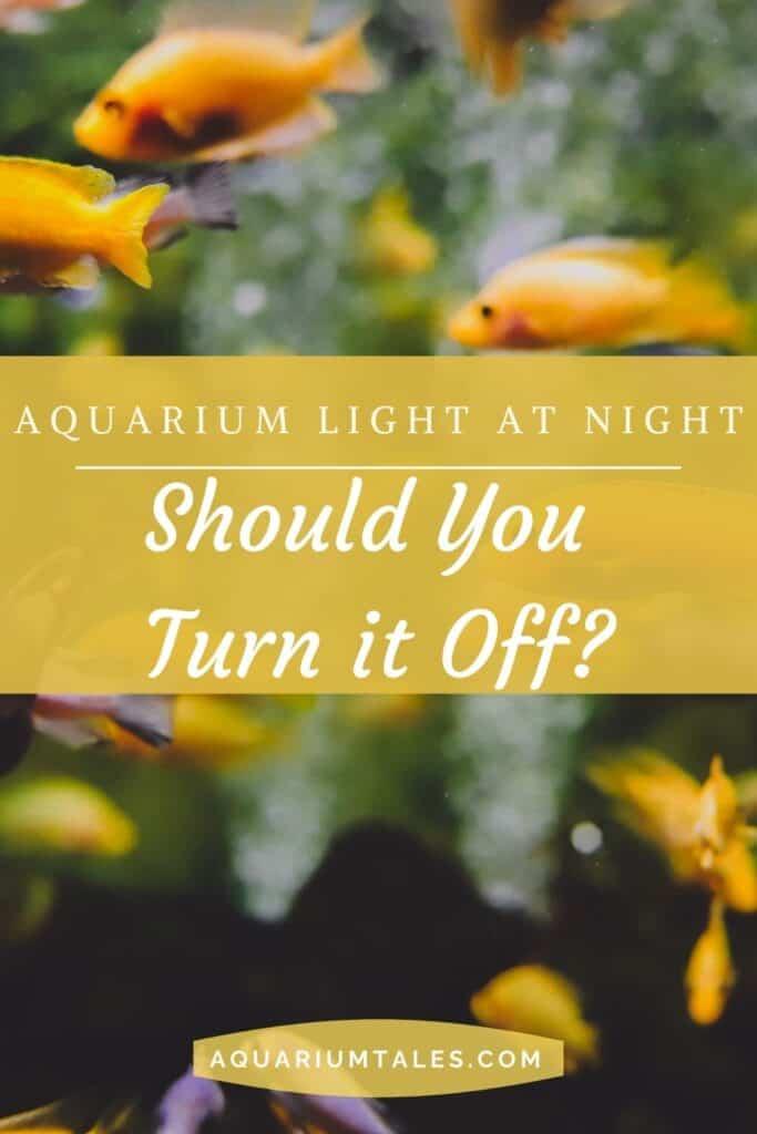 should I turn my fish tank light off at night_