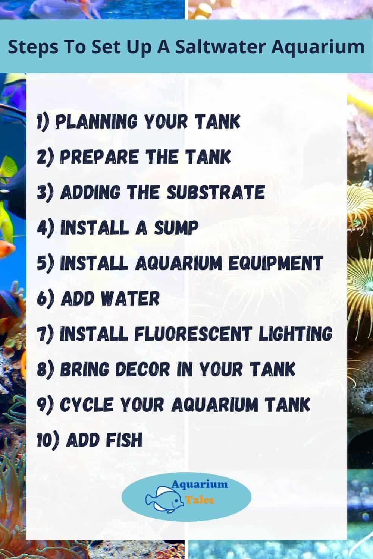 Steps To Set Up A Saltwater Aquarium