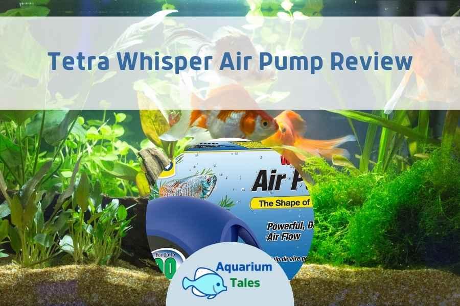 Tetra Whisper Air Pump Review by Aquarium Tales