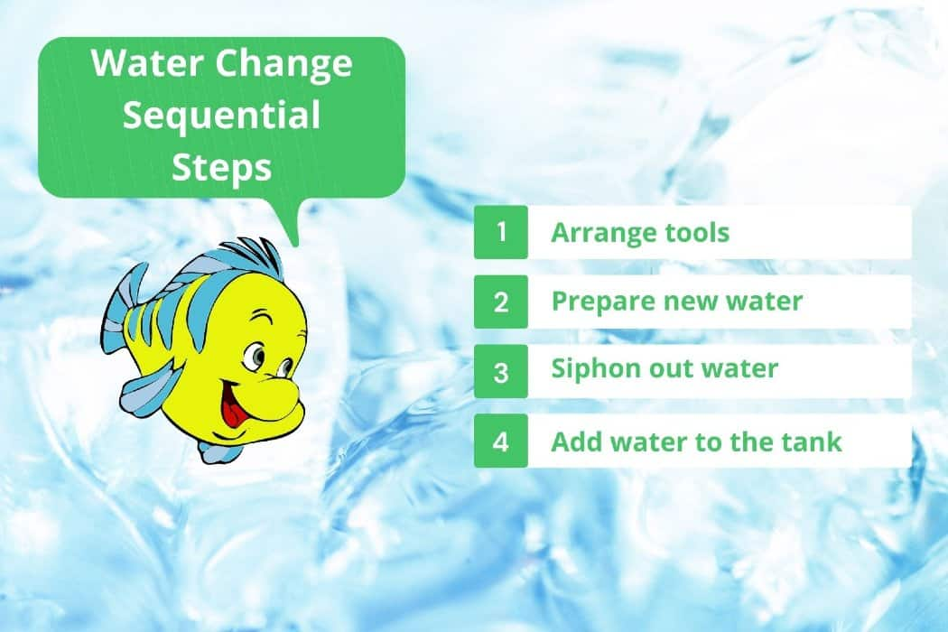 Fish-tank-water-change-sequential-step by step
