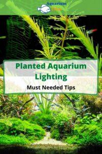 Planted Aquarium Lighting