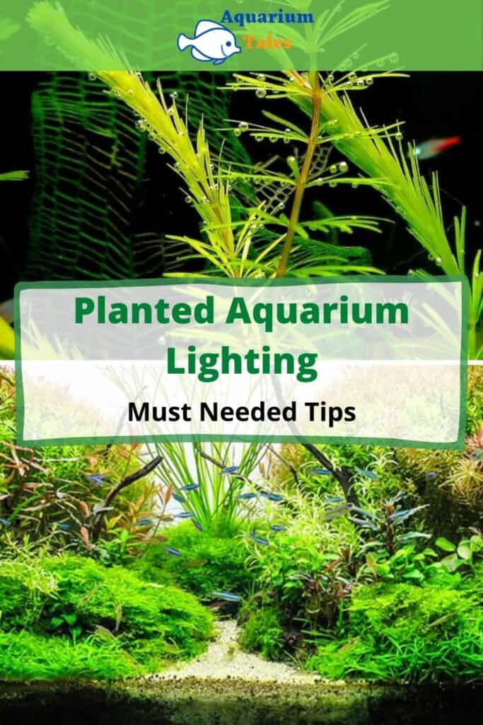 Planted Aquarium Lighting