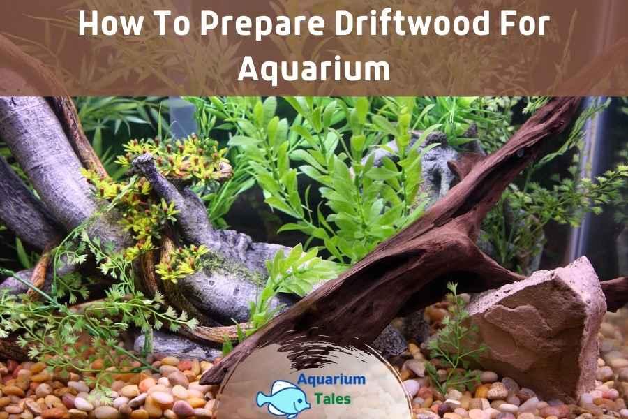 How to Prepare Driftwood for Aquarium by Aquarium Tales