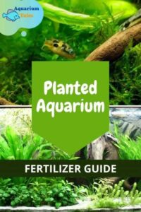 Planted Aquarium Fertilizer Guide