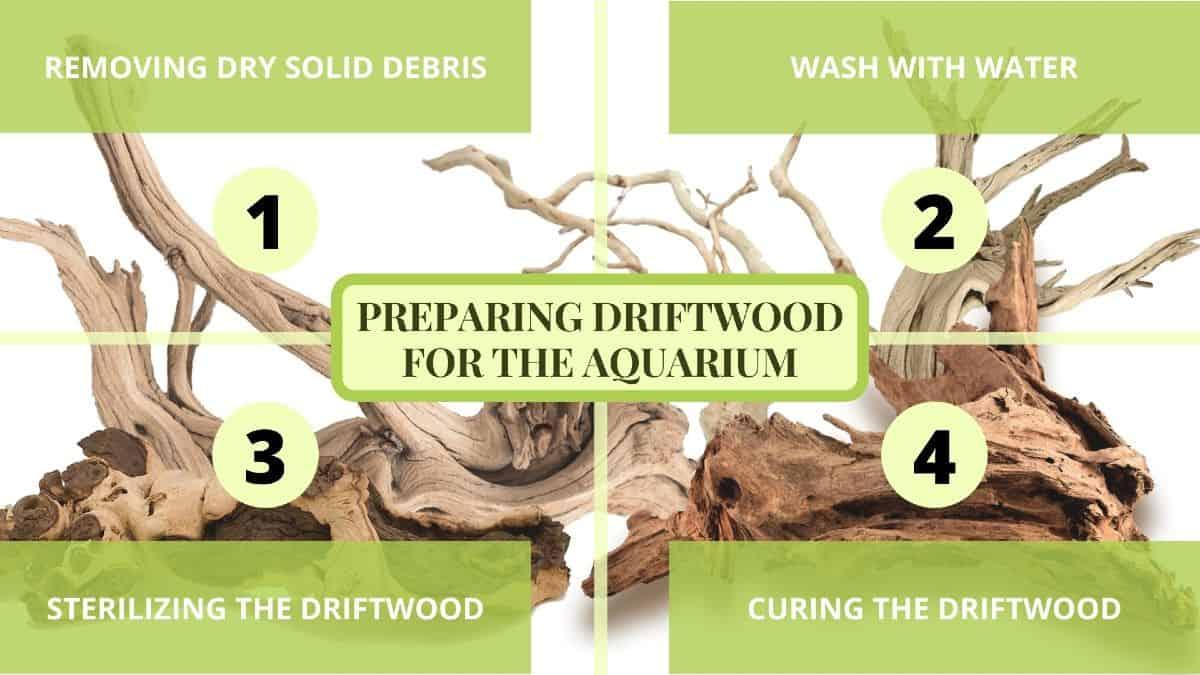 preparing driftwood for aquarium