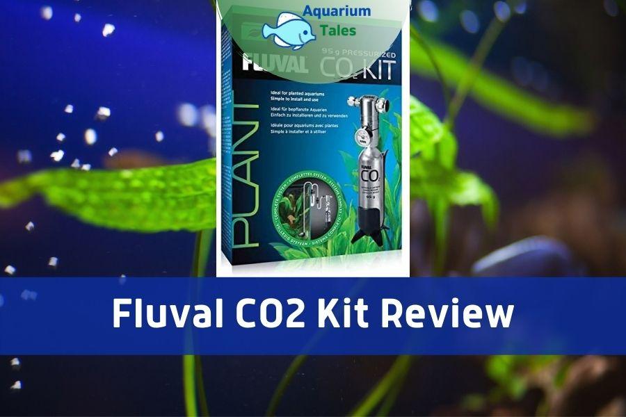 Fluval CO2 Kit Review by Aquarium Tales