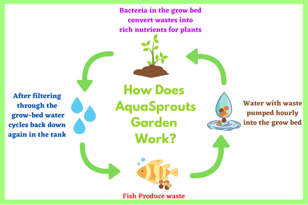 How AquaSprouts Garden Works
