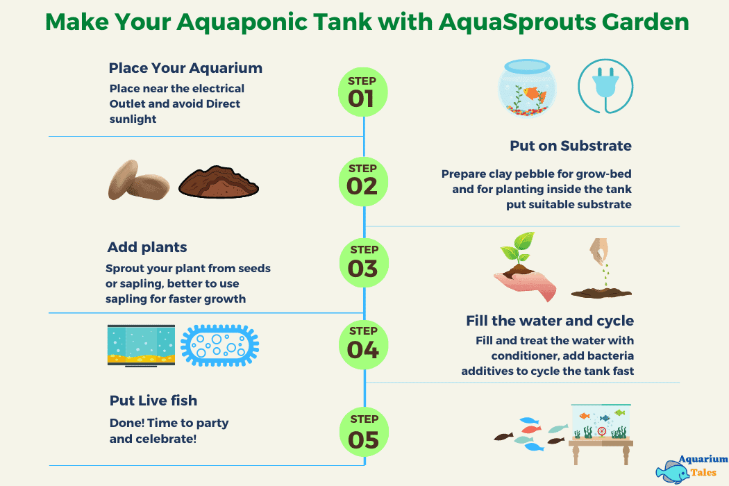 Make Your Aquaponic Tank with Aquasprouts Garden