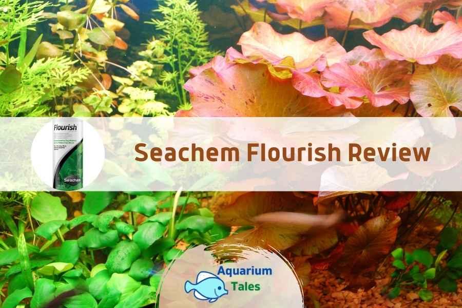Seachem Flourish Review by Aquarium Tales