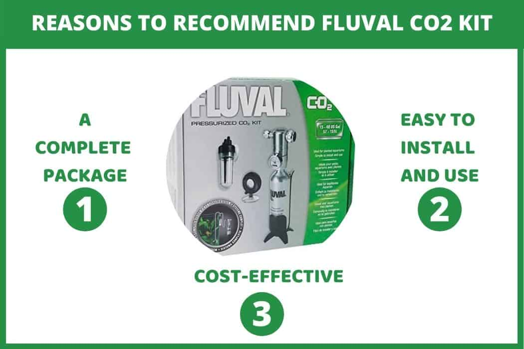reasons to recommend Fluval co2 kit