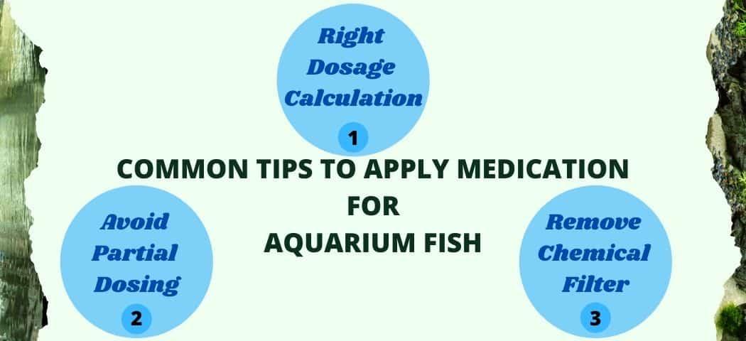 tips for ich medicine