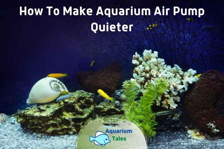 How To Make Aquarium Air Pump Quieter by Aquarium Tales