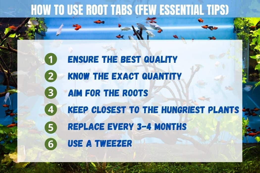How to Use Root Tabs Tips