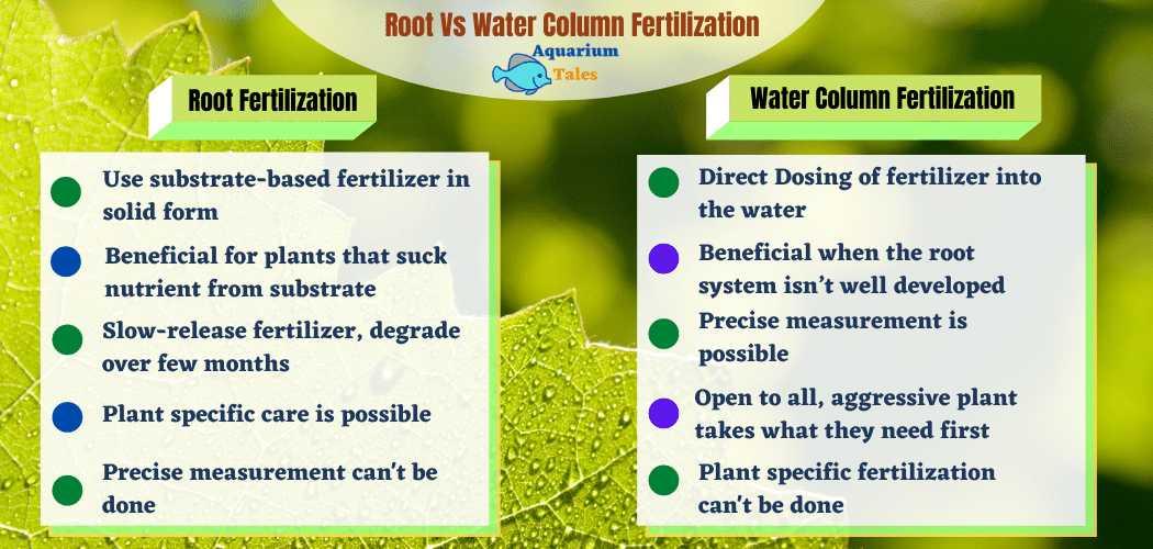Root Vs Water Column Fertilization