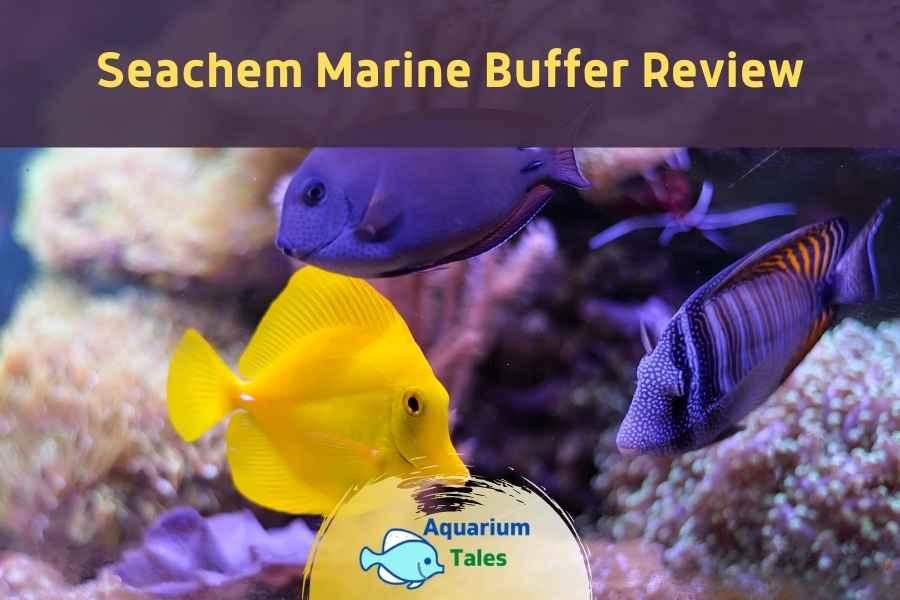 Seachem Marine Buffer Review by Aquarium Tales