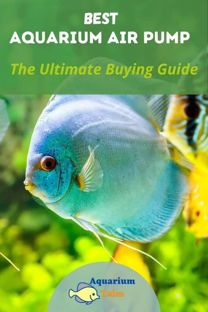 Best Aquarium Air Pump
