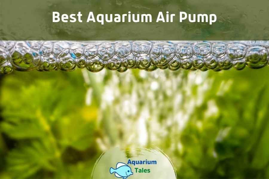 Best Aquarium Air Pump by Aquarium Tales