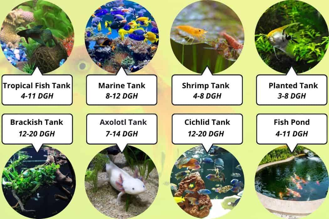 Best Hardness For your aquarium type