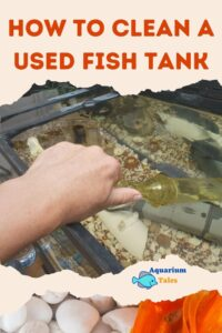 Cleaning A Used Fish Tank