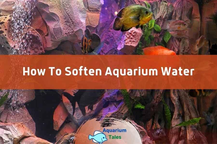 How To Soften Aquarium Water by Aquarium Tales