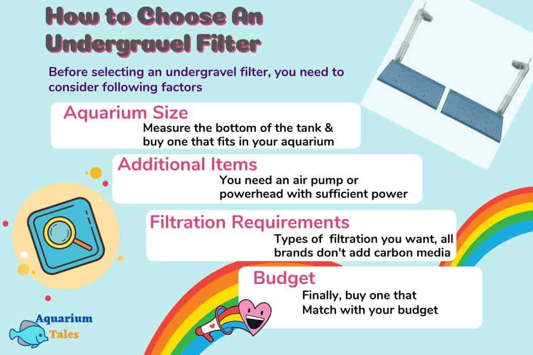 How to Choose An Undergravel Filter