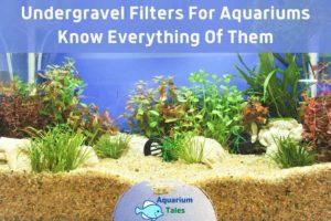 best undergravel filter by Aquarium Tales