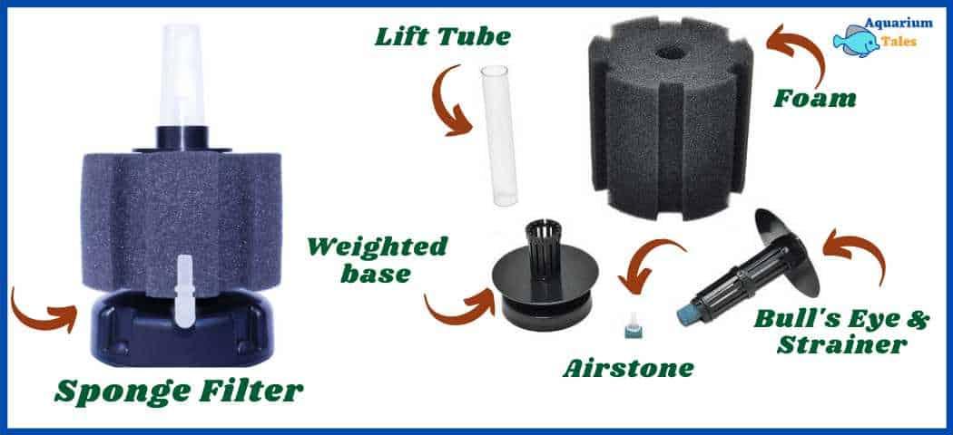 Anatomy of a sponge filter