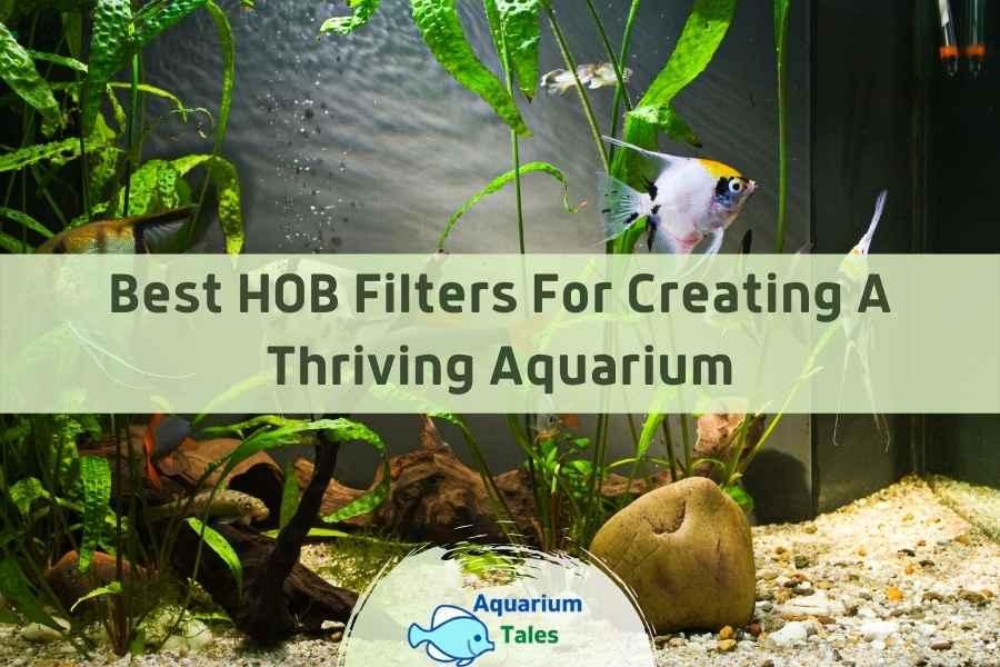 Best HOB Filter by Aquarium Tales